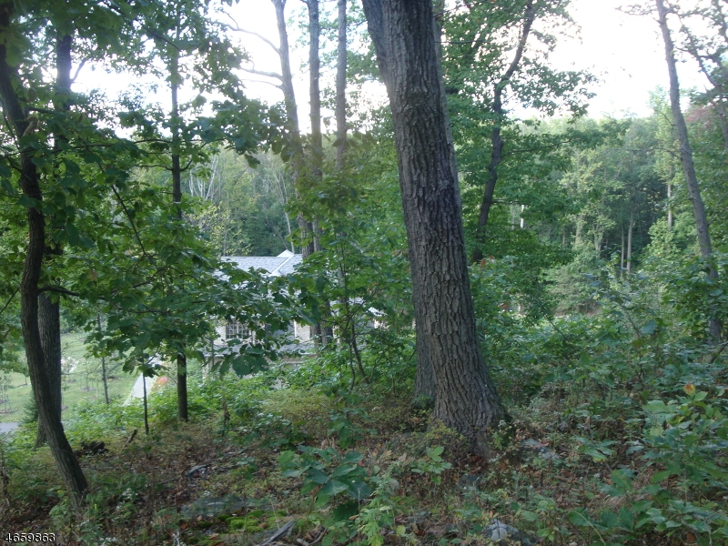 Additional photo for property listing at 3 Boulder Court  Boonton, New Jersey 07005 United States