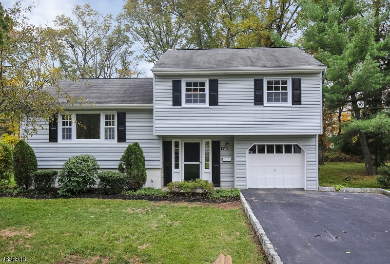 Single Family Home for Sale at 17 Pinchbrook Drive Florham Park, 07932 United States