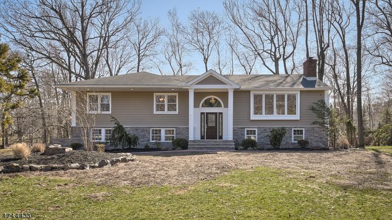 Частный односемейный дом для того Продажа на 68 Green Hill Road Springfield, Нью-Джерси 07081 Соединенные Штаты