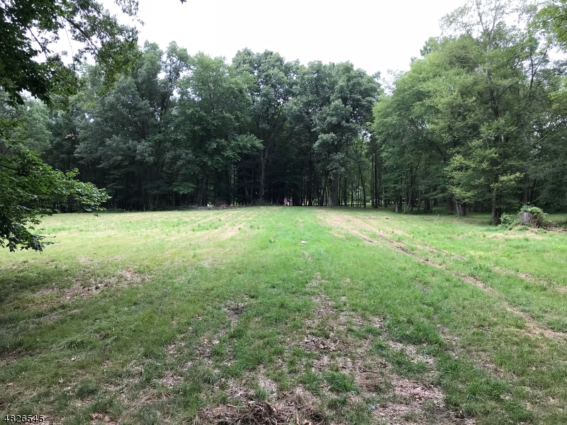 Land / Lots for Sale at 441 SOUTHERN BLVD 441 SOUTHERN BLVD Chatham Twp, New Jersey 07928 United States