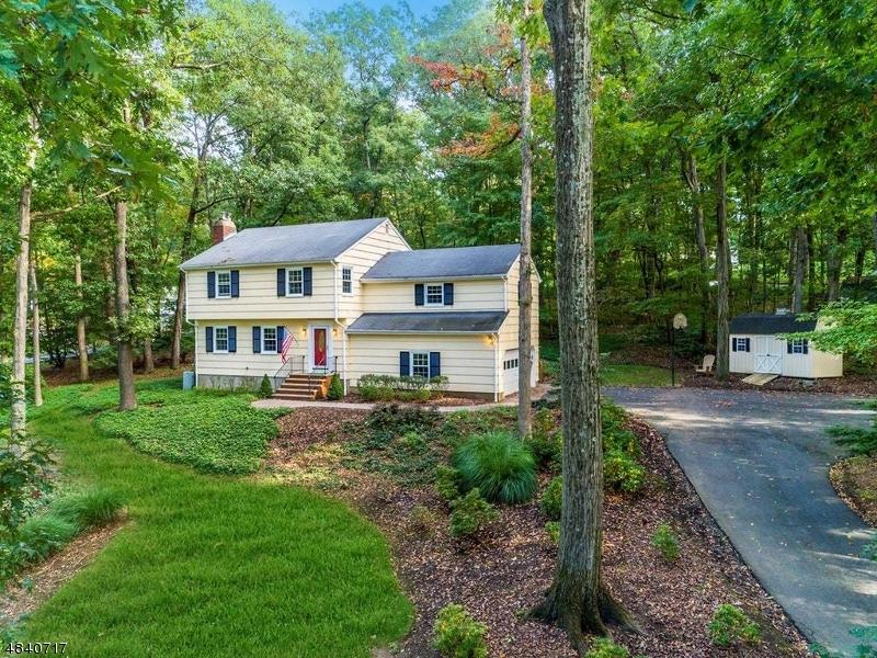 Property pour l Vente à 8 HARRISON BROOK Drive Bernards Township, New Jersey 07920 États-Unis