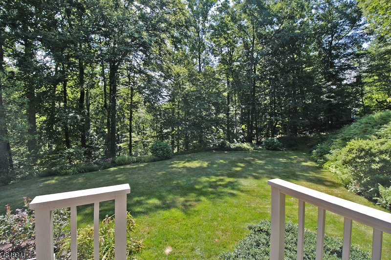 Additional photo for property listing at 233 Cherry Tree Bend Road  Port Murray, New Jersey 07865 États-Unis
