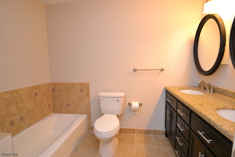 Additional photo for property listing at 13 Birch Ter  Mount Arlington, New Jersey 07856 United States