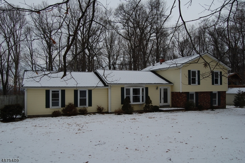 Single Family Home for Sale at 90 Quenby Mountain Road Great Meadows, 07838 United States