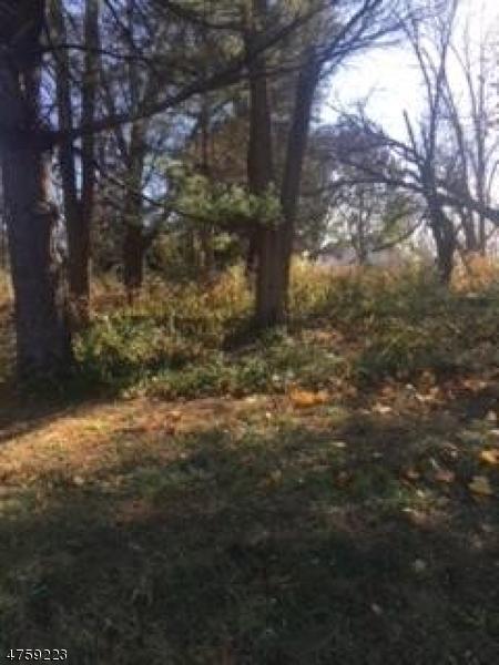 Đất đai vì Bán tại 1345 ROUTE 202 Branchburg, New Jersey 08876 Hoa Kỳ