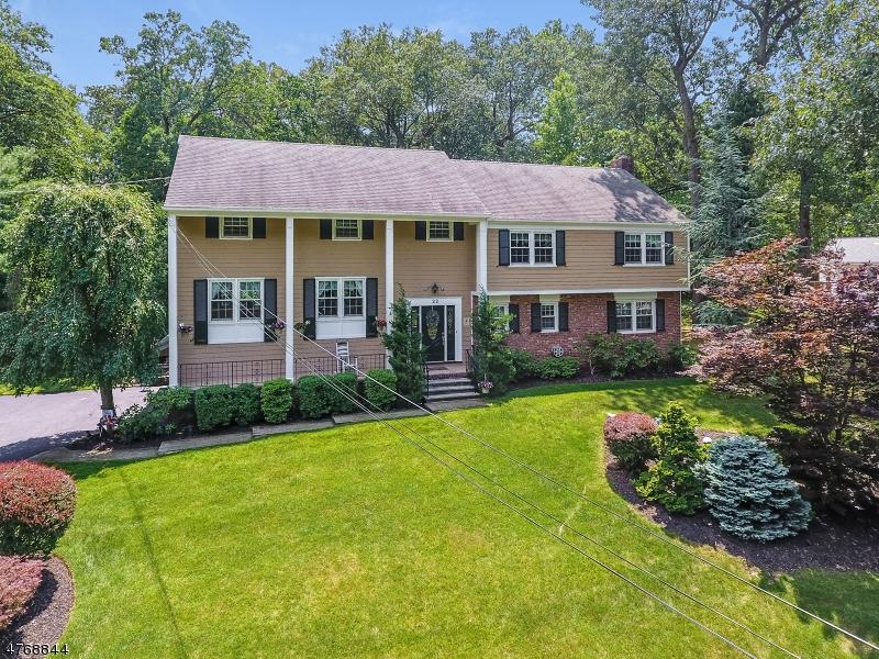独户住宅 为 销售 在 22 Green Hill Road 斯普林菲尔德, 新泽西州 07081 美国