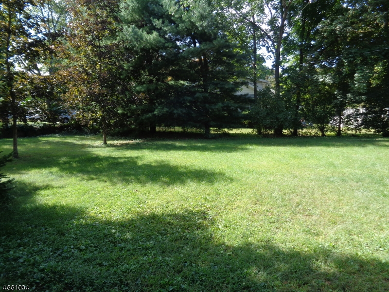 Additional photo for property listing at 41 Elizabeth Lane  Budd Lake, Нью-Джерси 07828 Соединенные Штаты