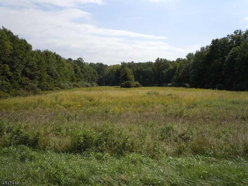 Land for Sale at STROTZ Road Union, New Jersey 08802 United States
