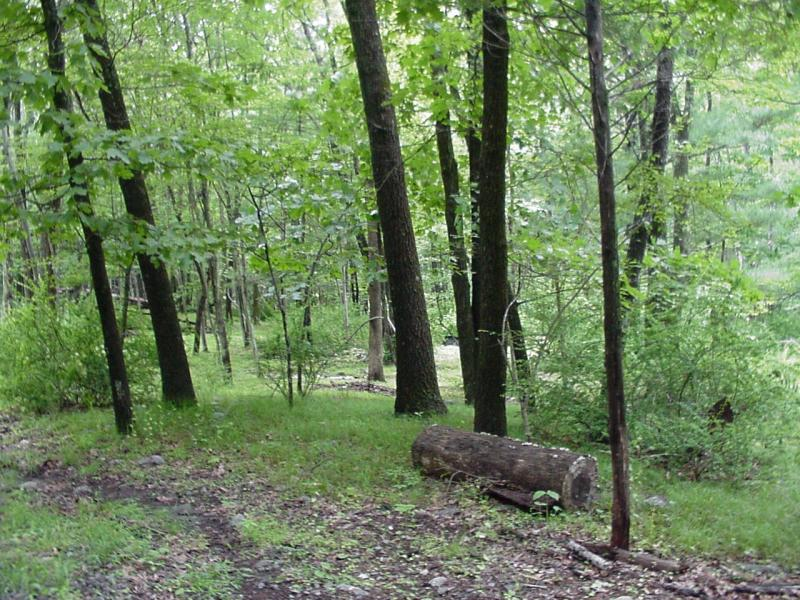 Land for Sale at 254 New Road Montague, New Jersey 07827 United States