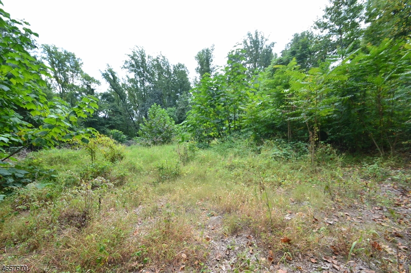 Land for Sale at Blk 113 Pinchers Point Road Phillipsburg, New Jersey 08865 United States