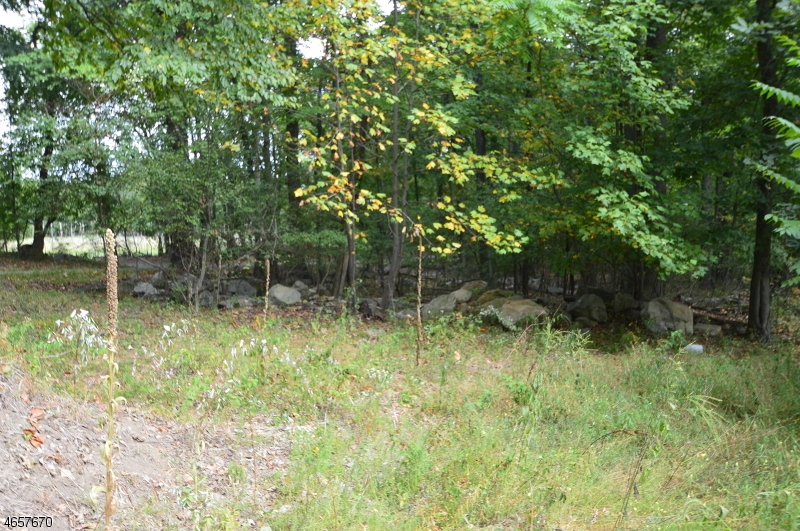 Additional photo for property listing at Blk 113 Pinchers Point Road  Phillipsburg, New Jersey 08865 United States