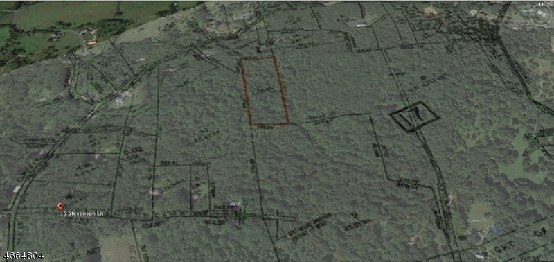 Land for Sale at 44A Mount Grove Rd-Rear Lebanon, New Jersey 07830 United States