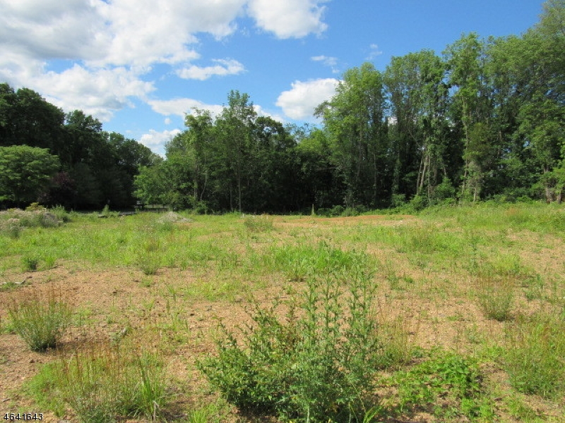 Residential lot in exclusive neighborhood with all permits obtained. Four bedroom septic and well already installed. Owner is willing to build your dream house for you.  Bring your own plans or ask him for ideas. Easy access to Route 78. Corner lot.