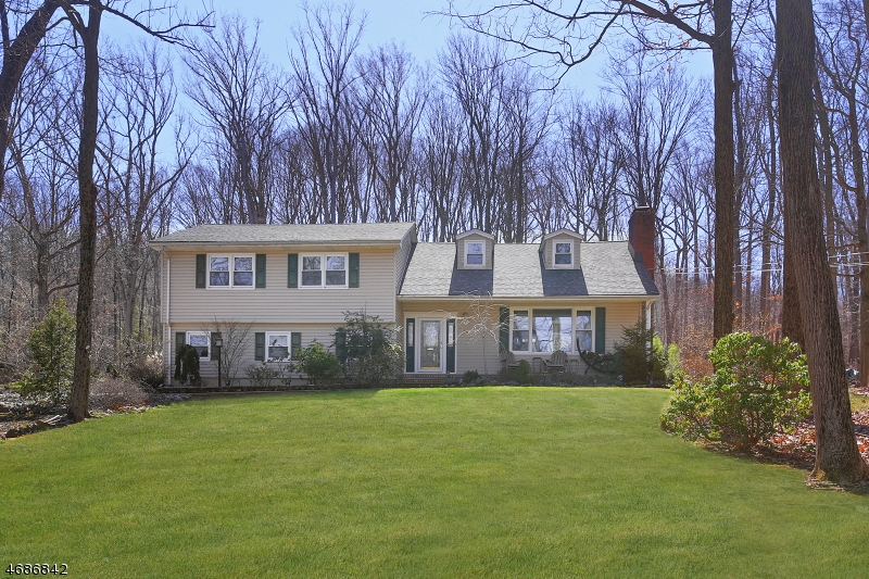 36 Wolf Hill Dr, Warren Twp., NJ 07059