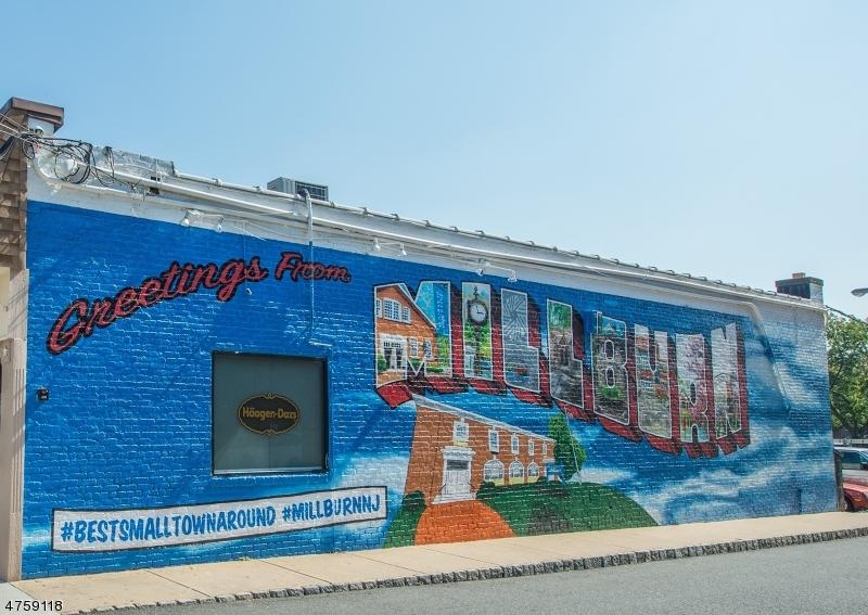 176  Millburn Ave, apt 6 Millburn Twp, NJ 07041-1812