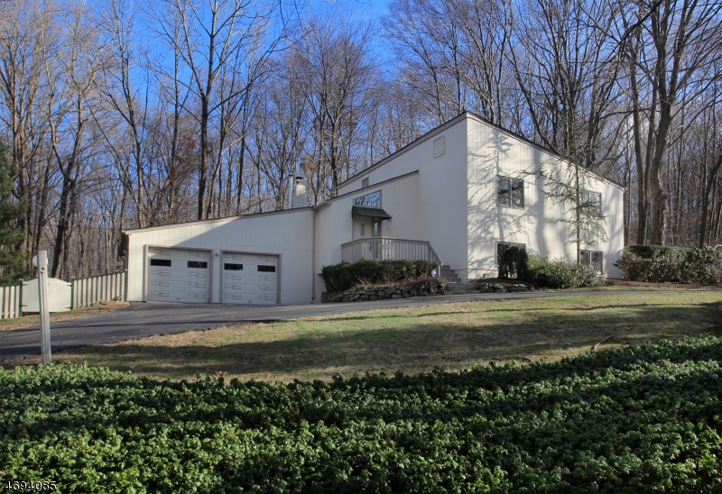 105  Ironia Rd Mendham Twp, NJ 07945-3138