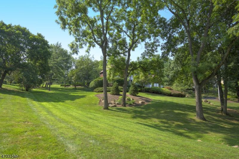 10  Deer Path Peapack Gladstone Boro, NJ 07934-2100