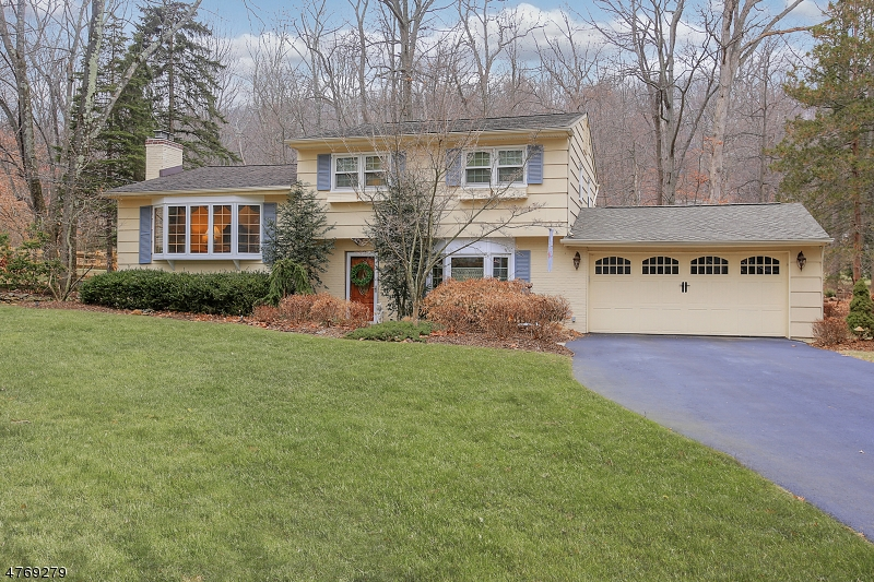 31  Starlight Dr Morris Twp, NJ 07960-2538