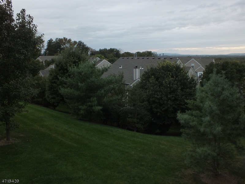 15  HEATHERWOOD LN Bedminster Twp, NJ 07921-2051