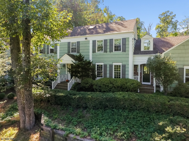 154  Deer Ridge Rd Bernards Twp, NJ 07920-3403