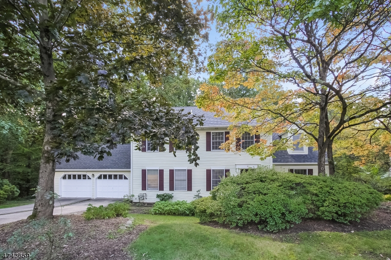 41  Maple Village Ct Bernardsville Boro, NJ 07924-2509
