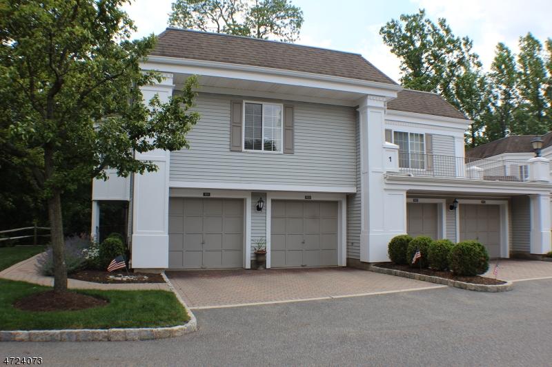 101  Riveredge Dr Chatham Twp, NJ 07928-3119