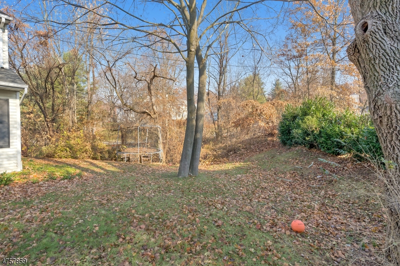 3  Mine Ave Bernardsville Boro, NJ 07924-2418