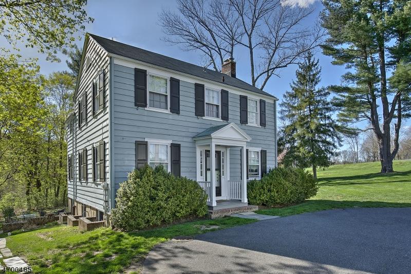 157  Village Road Harding Twp, NJ 07976-3031