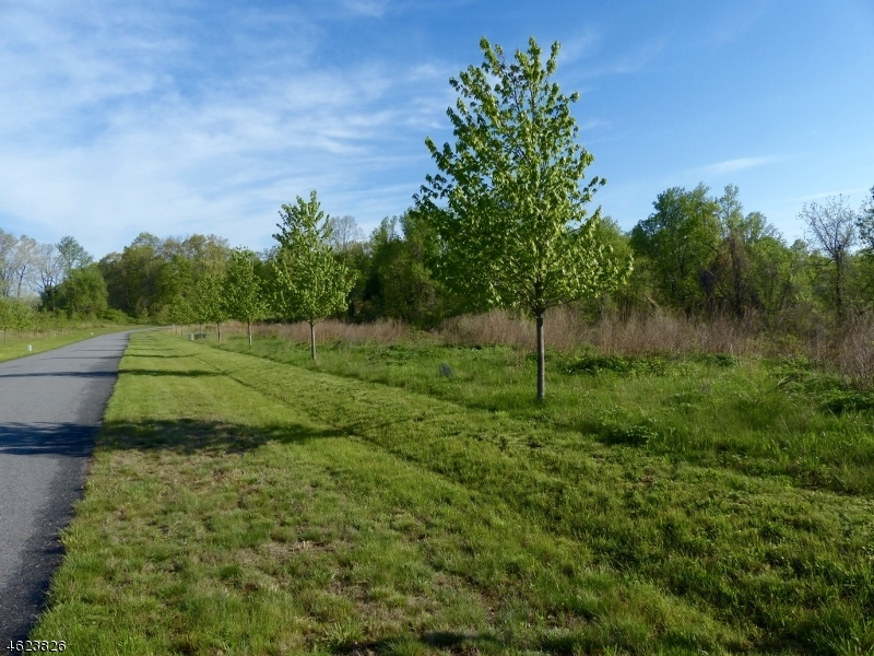1  Preserve Ln Bernardsville Boro, NJ 07924