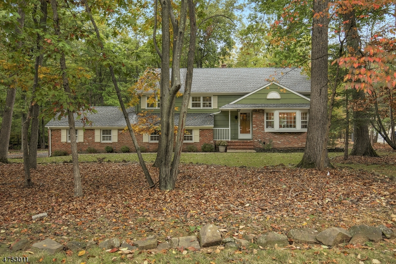 3  Red Hill Rd Warren Twp, NJ 07059-5519