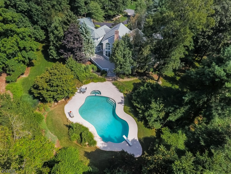 8  Hill Hollow Rd Warren Twp, NJ 07059-5535