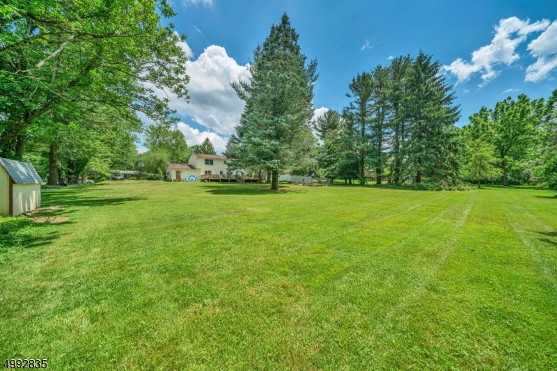 Beautiful level backyard with mature trees lining the property for privacy on .93 acres.