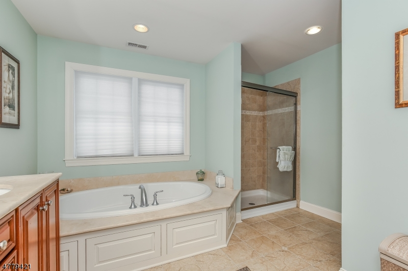 Roomy shower is set apart from the tub. The commode is across from the shower for a bit of privacy.