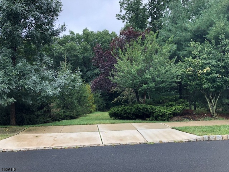 Photo of home for sale at 0 Tulsa Court, South Brunswick Twp. NJ