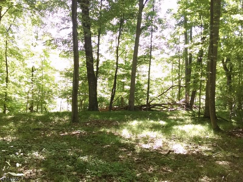 Photo of home for sale at 130 Ridge Rd, Hampton Twp. NJ