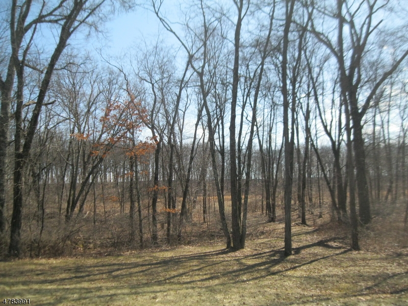 153 Wykertown Rd Frankford Twp., NJ 07826 - MLS #: 3453325