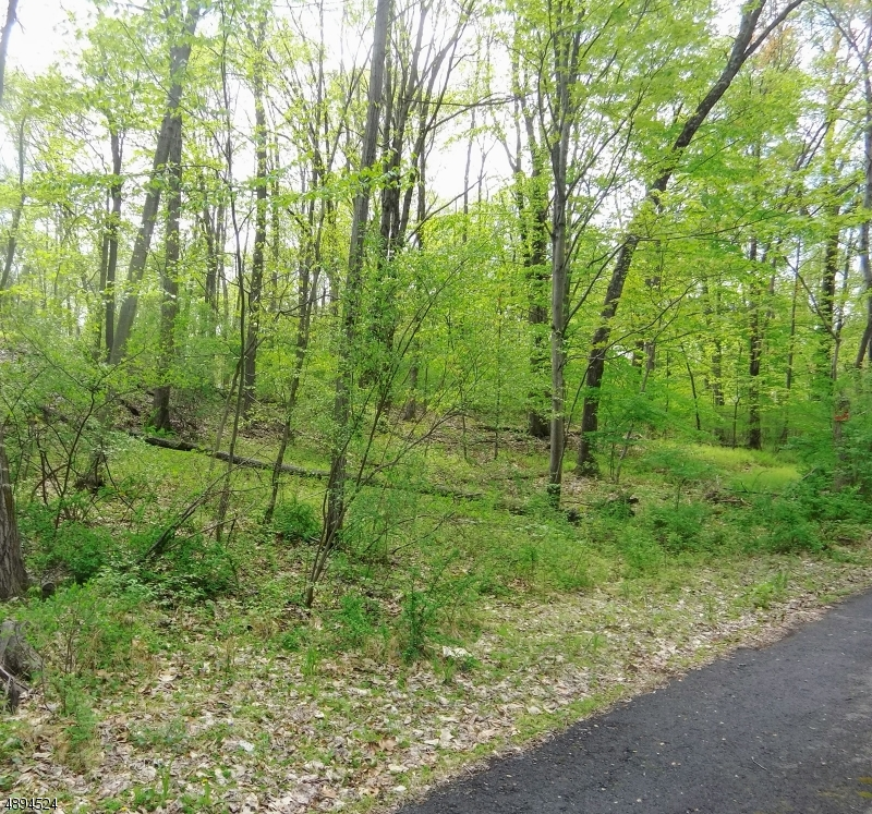 Photo of home for sale at CAMP WASIGAN RD, Frelinghuysen Twp. NJ