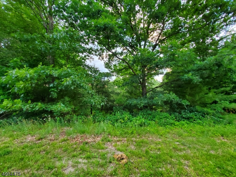 Photo of home for sale at CHUBBY LN, Montague Twp. NJ