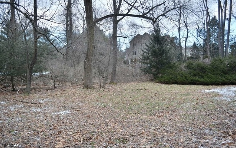 Photo of home for sale at 23 BROOK RD, Upper Saddle River Boro NJ