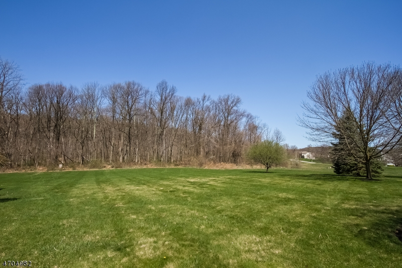 20 WILLEVER RD, BETHLEHEM TWP., NJ 08802  Photo