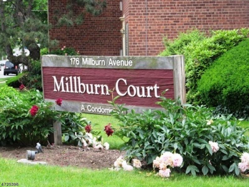 176 MILLBURN AVE, MILLBURN/SHORT, NJ 07041  Photo