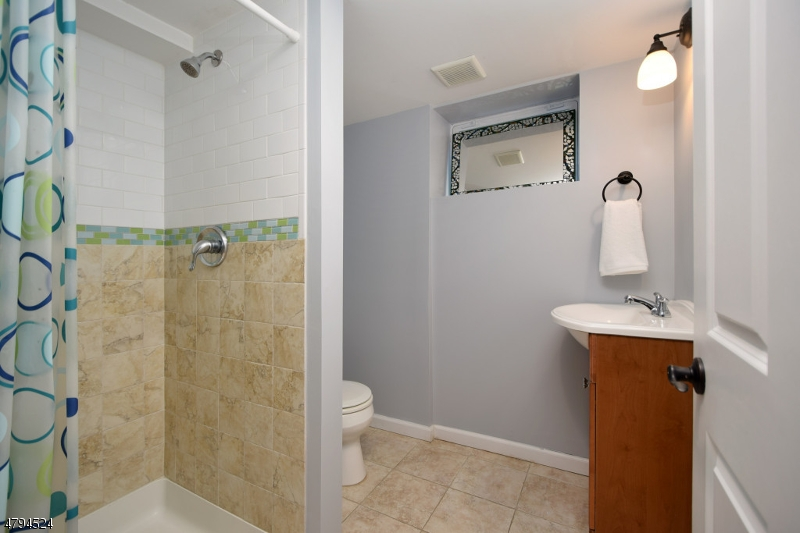 163 N EUCLID AVE, WESTFIELD TOWN, NJ 07090  Photo 15